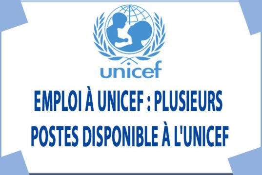 Emploi à UNICEF : Plusieurs Postes disponible à l'UNICEF